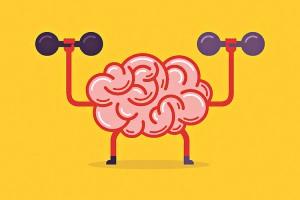 brain exer